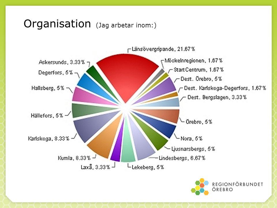 Organisation (Jag arbetar inom:)