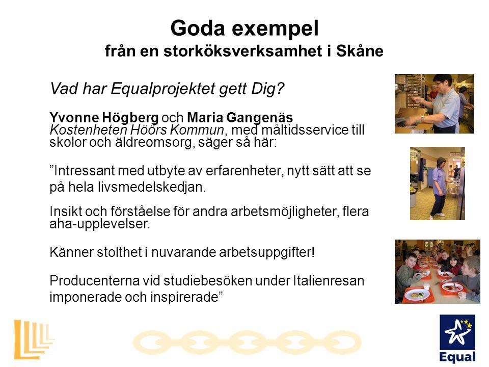 från en storköksverksamhet i Skåne