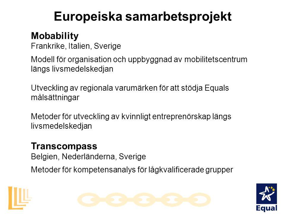 Europeiska samarbetsprojekt