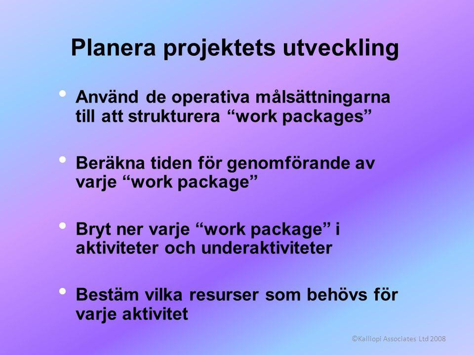 Planera projektets utveckling