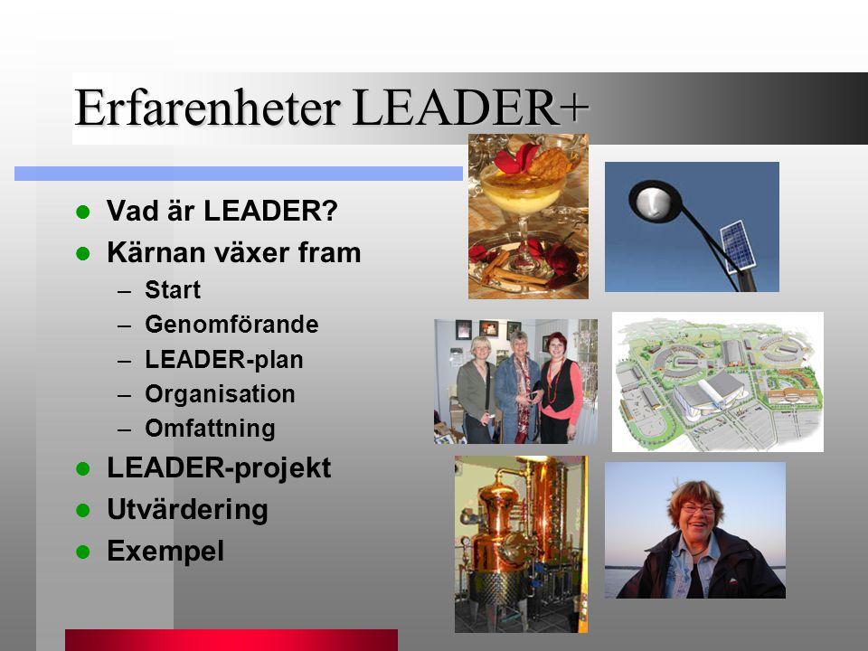 Erfarenheter LEADER+ Vad är LEADER Kärnan växer fram LEADER-projekt