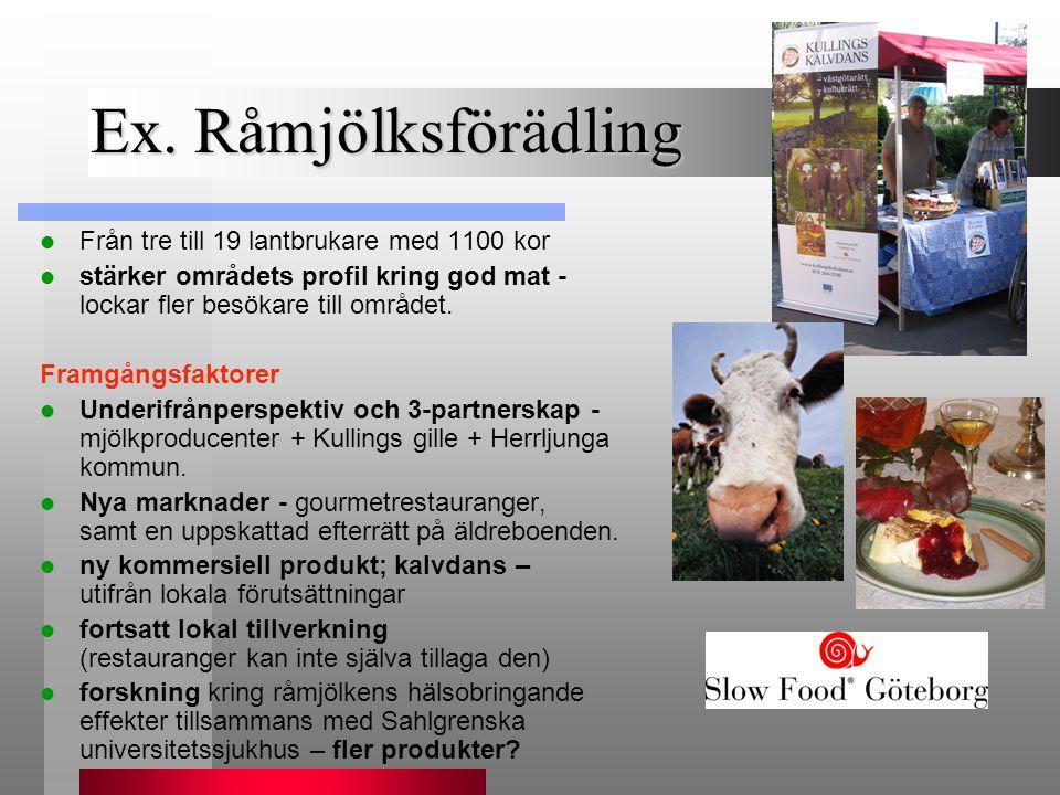 Ex. Råmjölksförädling Från tre till 19 lantbrukare med 1100 kor