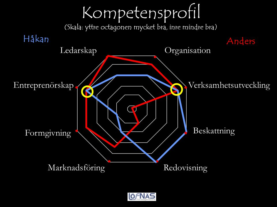 Kompetensprofil (Skala: yttre octagonen mycket bra, inre mindre bra)