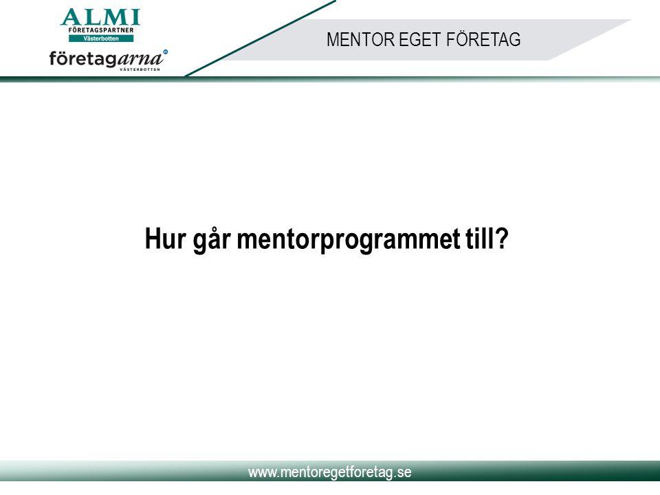 Hur går mentorprogrammet till