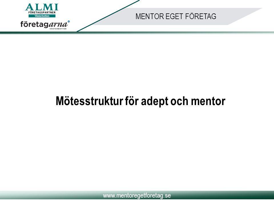 Mötesstruktur för adept och mentor