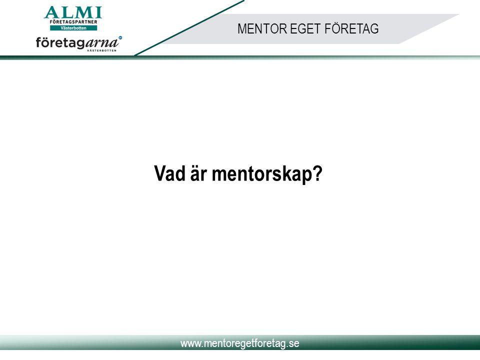 Vad är mentorskap