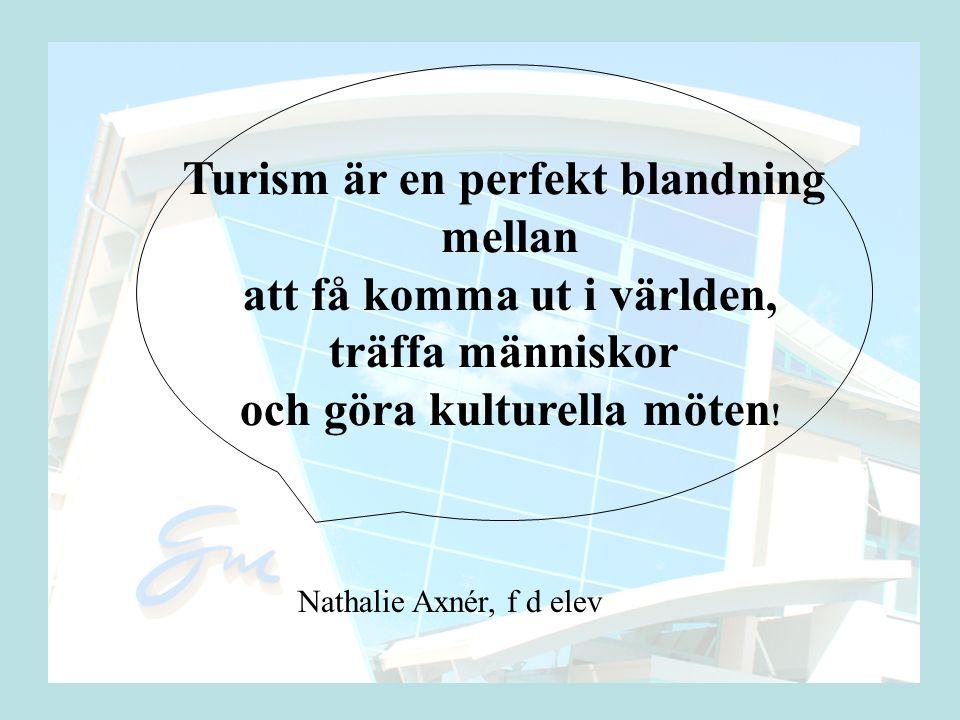 Turism är en perfekt blandning mellan att få komma ut i världen,
