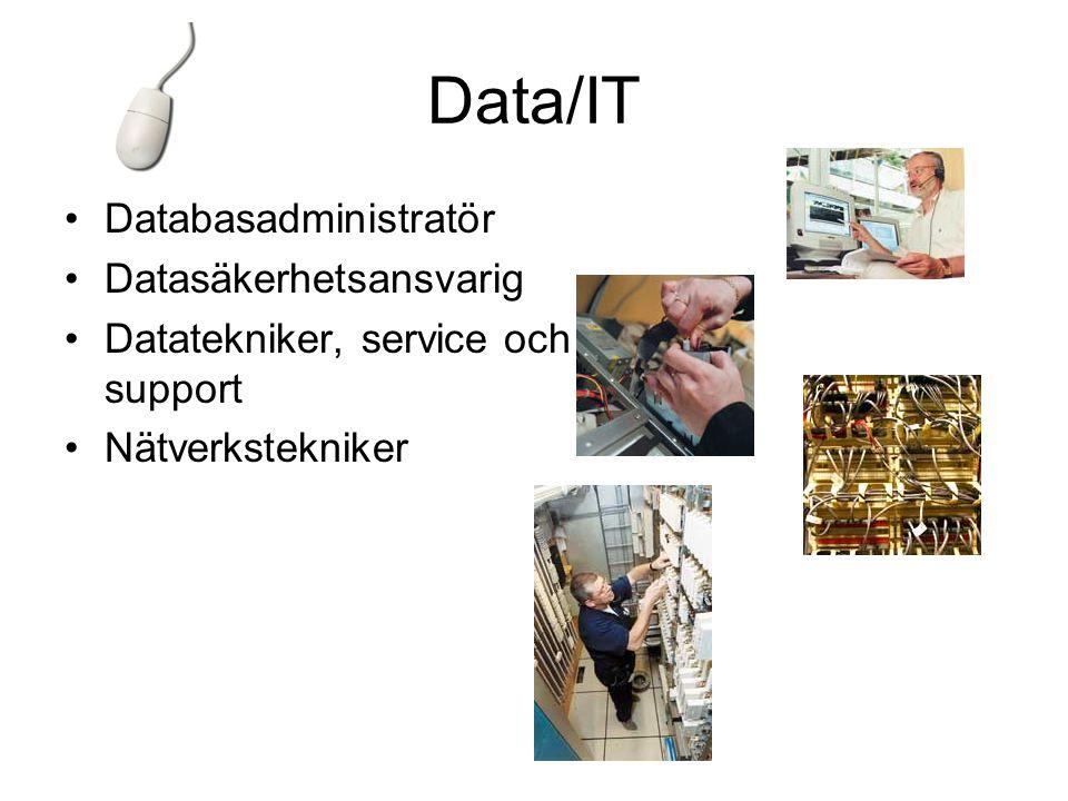 Data/IT Databasadministratör Datasäkerhetsansvarig