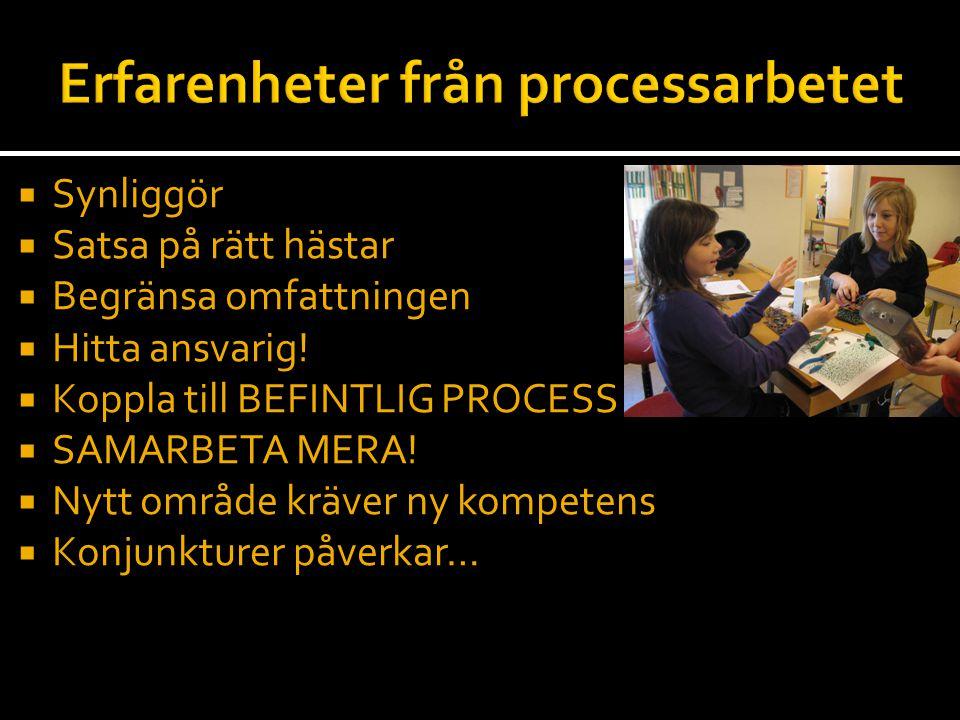 Erfarenheter från processarbetet