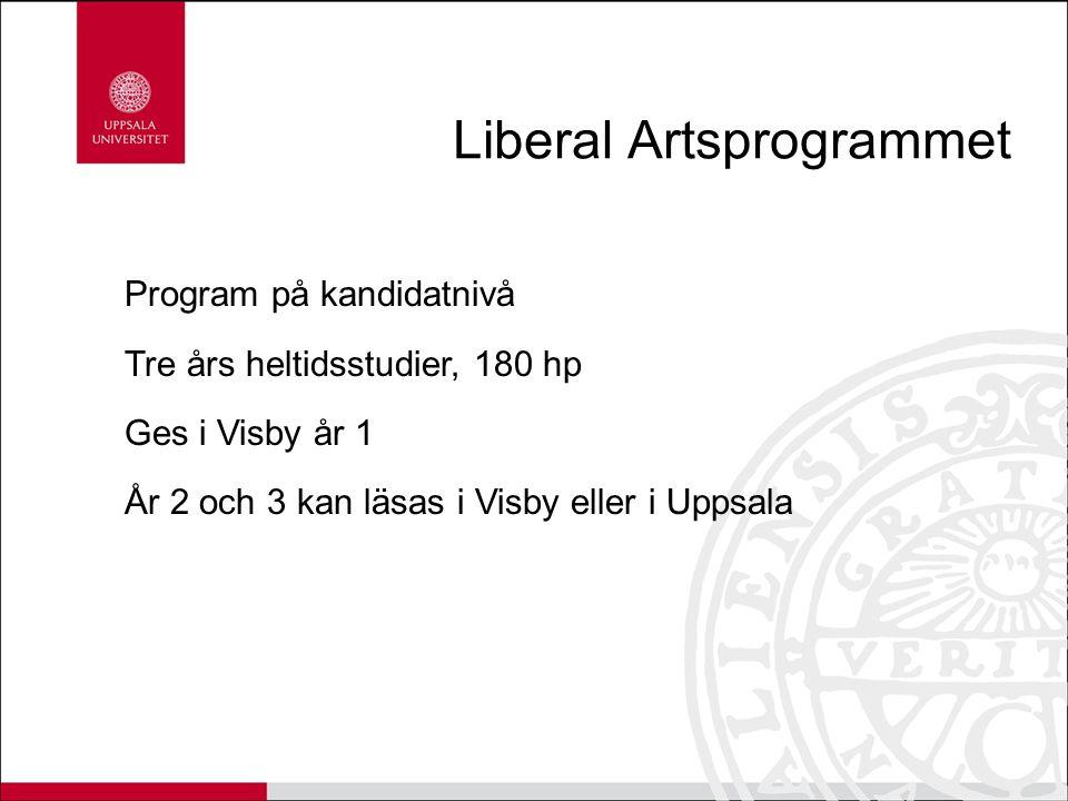 Liberal Artsprogrammet
