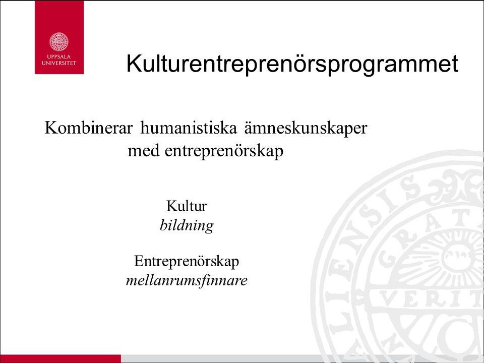 Kulturentreprenörsprogrammet