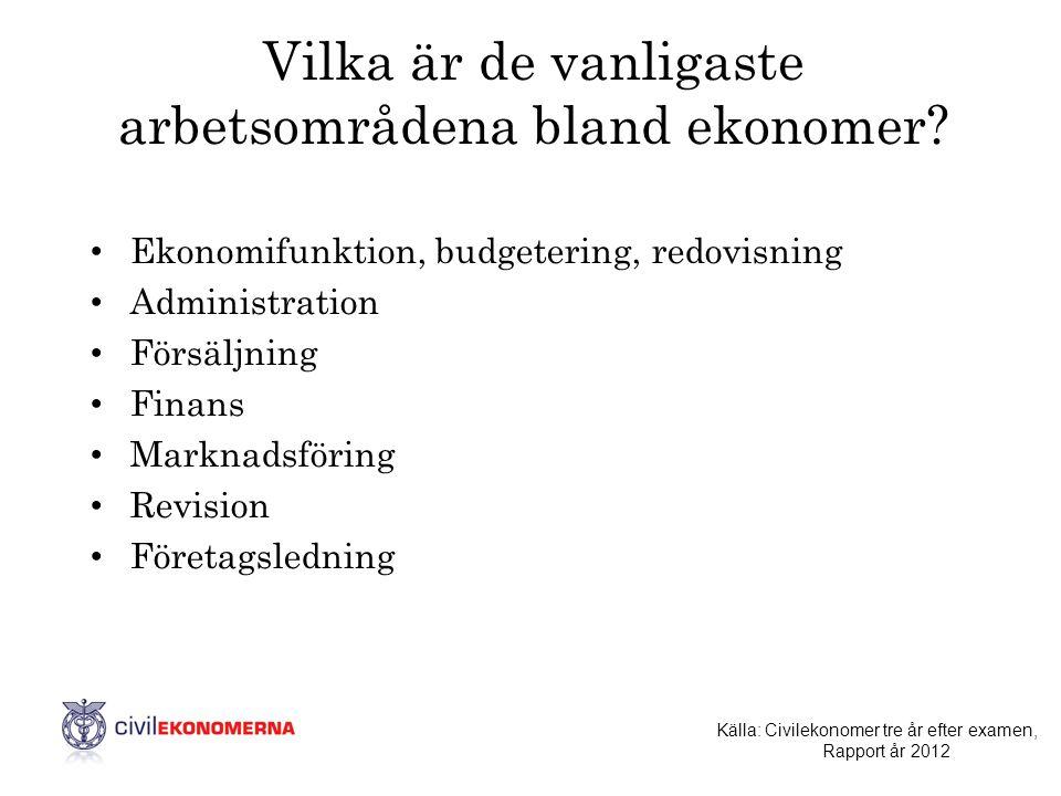 Vilka är de vanligaste arbetsområdena bland ekonomer