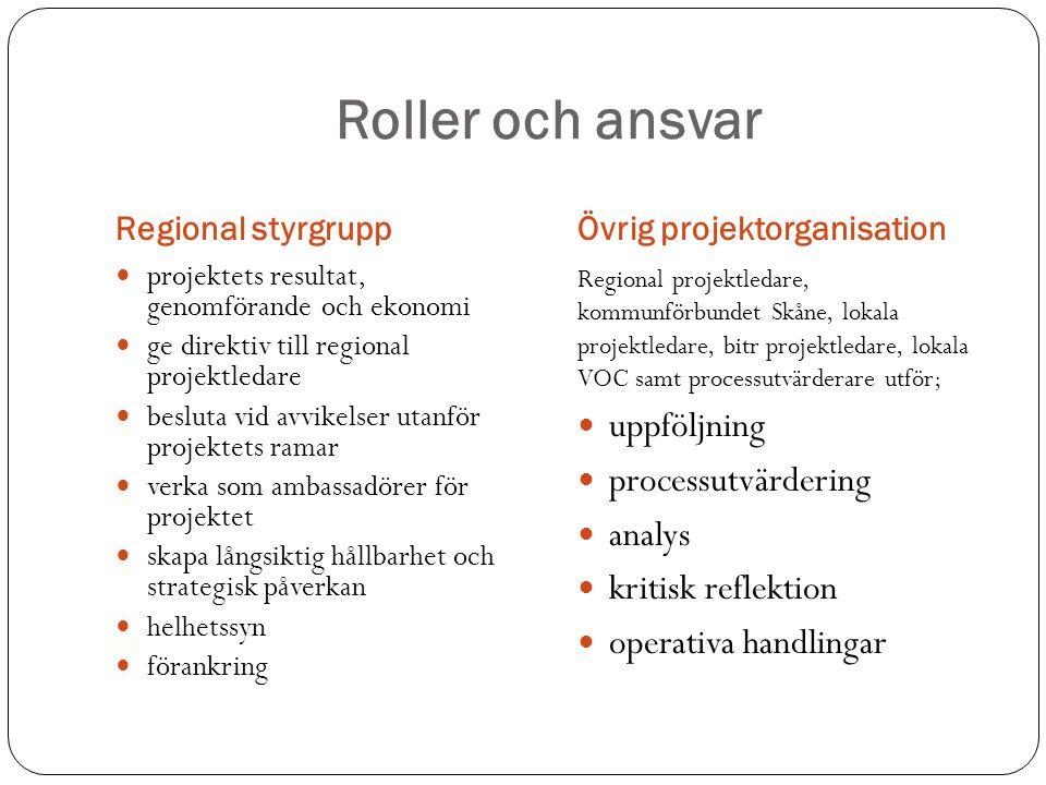 Roller och ansvar uppföljning processutvärdering analys