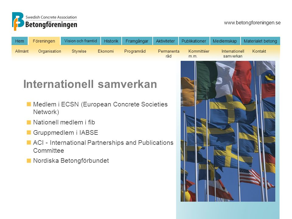 Internationell samverkan