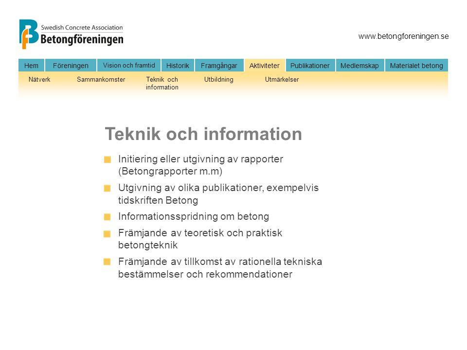 Teknik och information