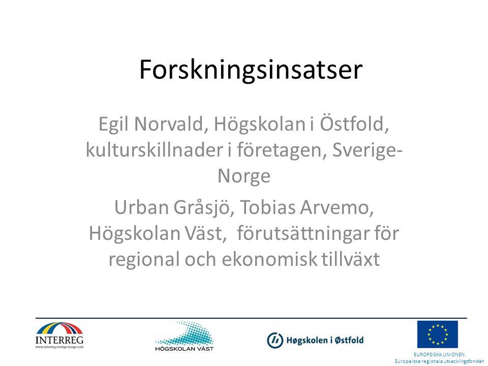 Forskningsinsatser Egil Norvald, Högskolan i Östfold, kulturskillnader i företagen, Sverige-Norge.