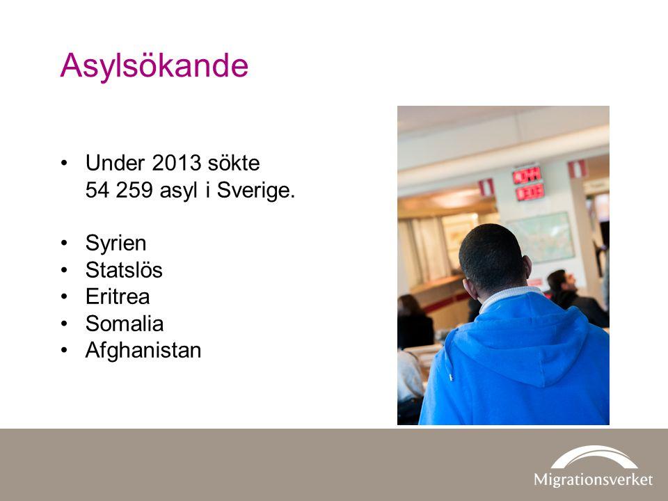 Asylsökande Under 2013 sökte 54 259 asyl i Sverige. Syrien Statslös