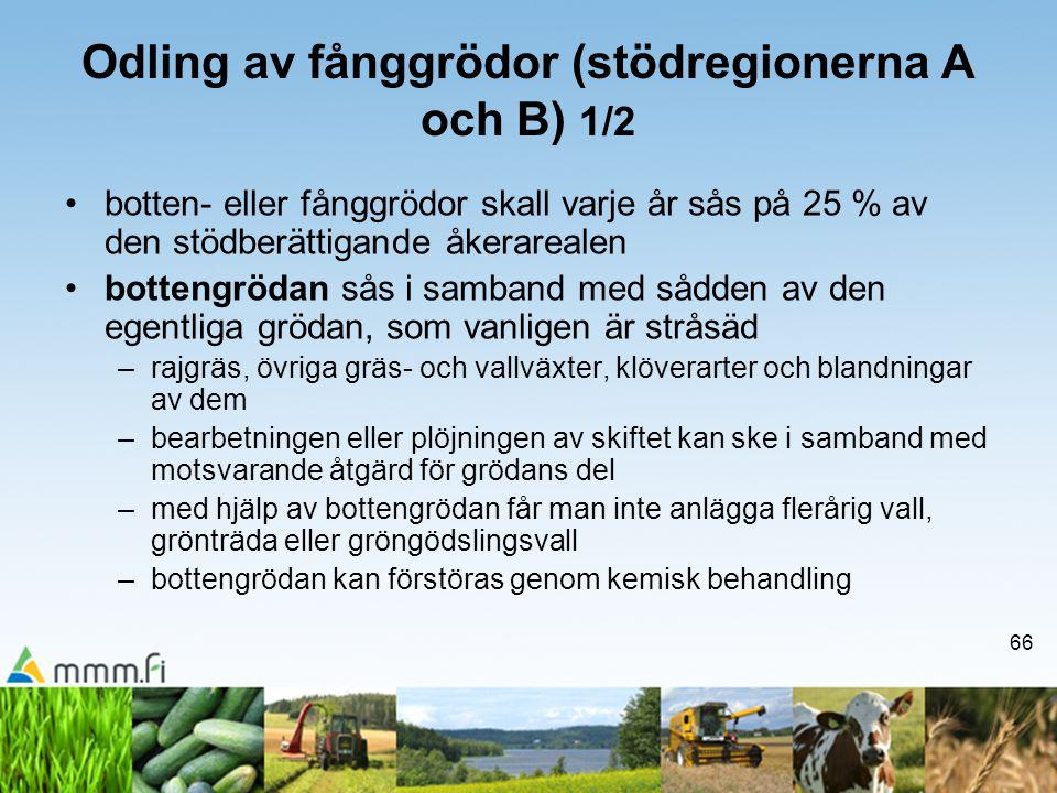 Odling av fånggrödor (stödregionerna A och B) 1/2