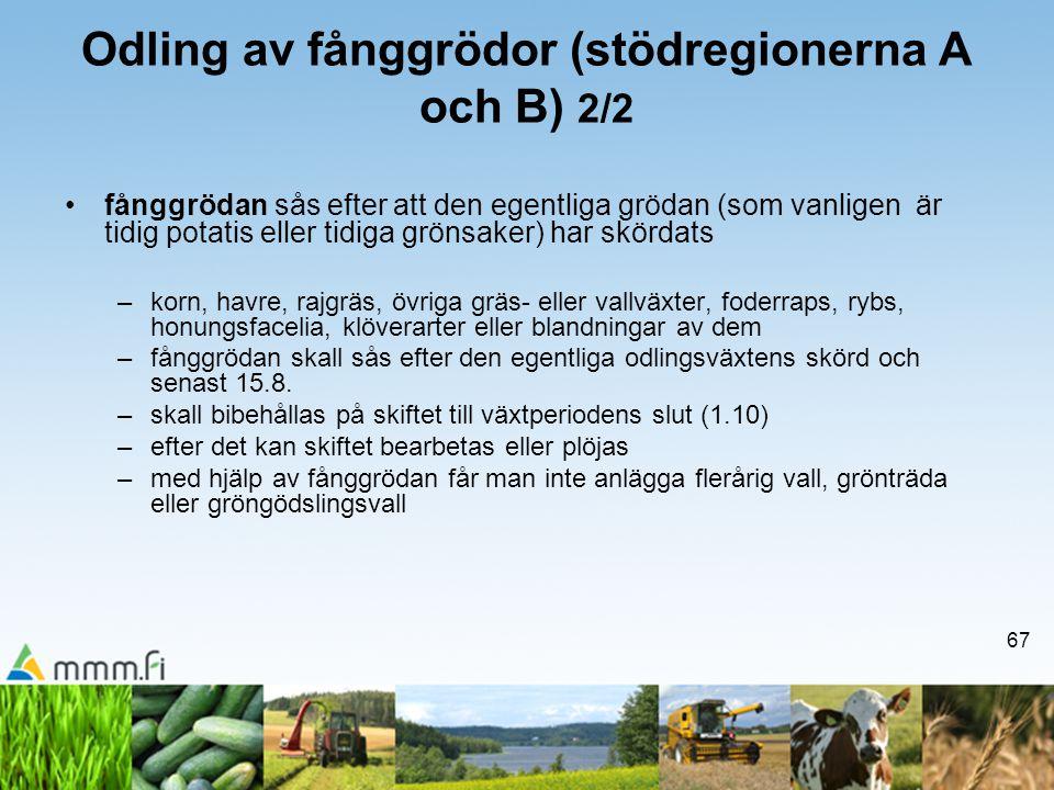 Odling av fånggrödor (stödregionerna A och B) 2/2