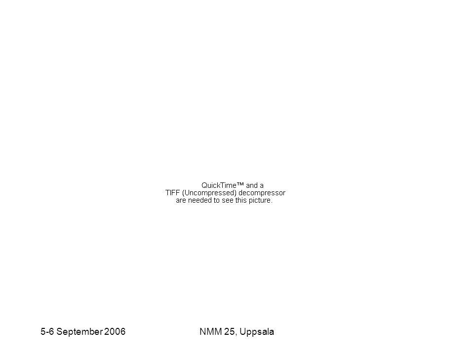 5-6 September 2006 NMM 25, Uppsala