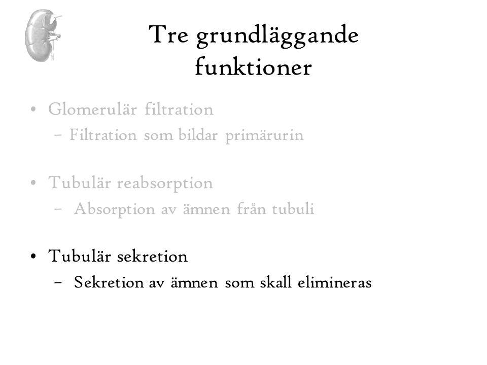 Tre grundläggande funktioner
