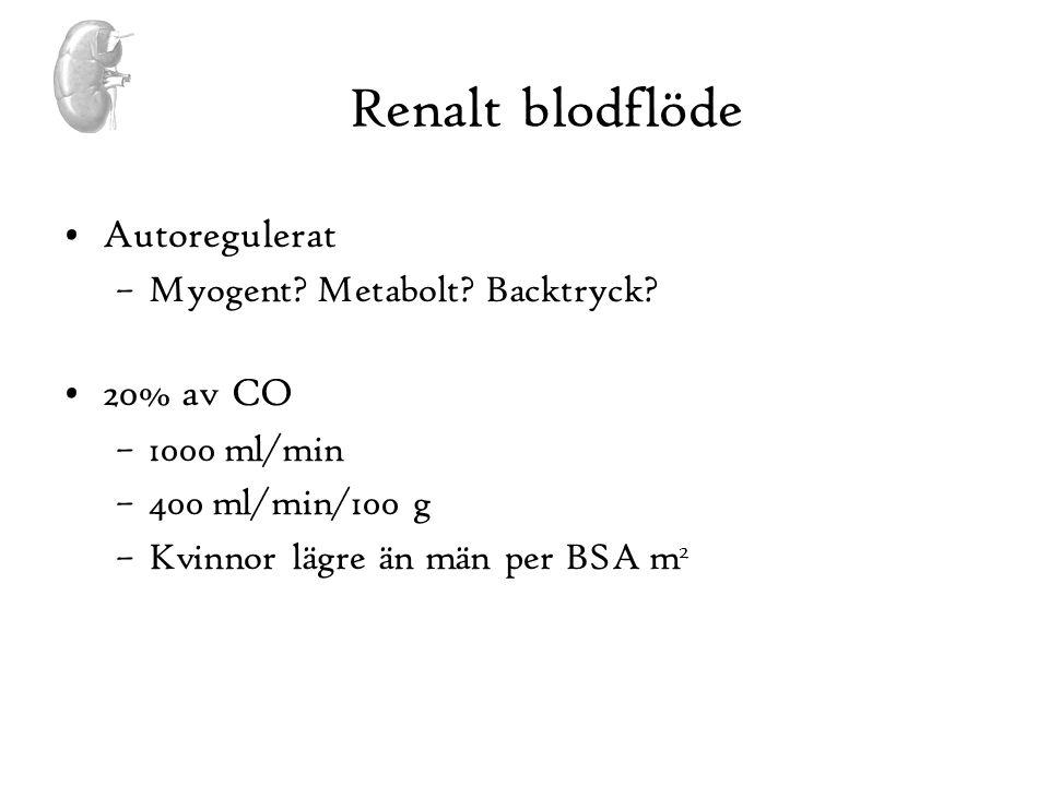 Renalt blodflöde Autoregulerat 20% av CO Myogent Metabolt Backtryck