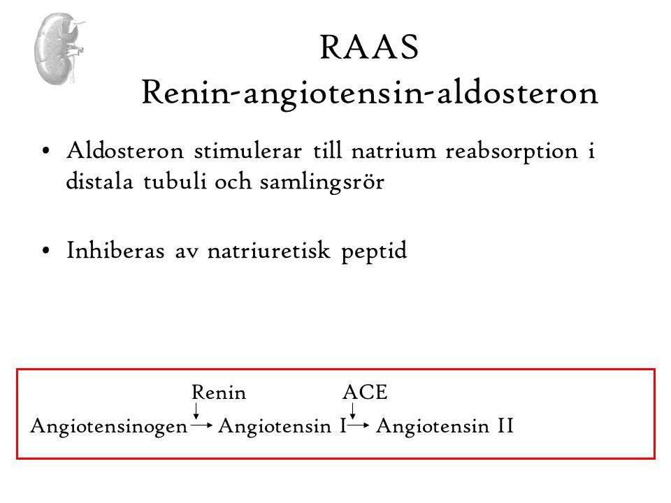 RAAS Renin-angiotensin-aldosteron