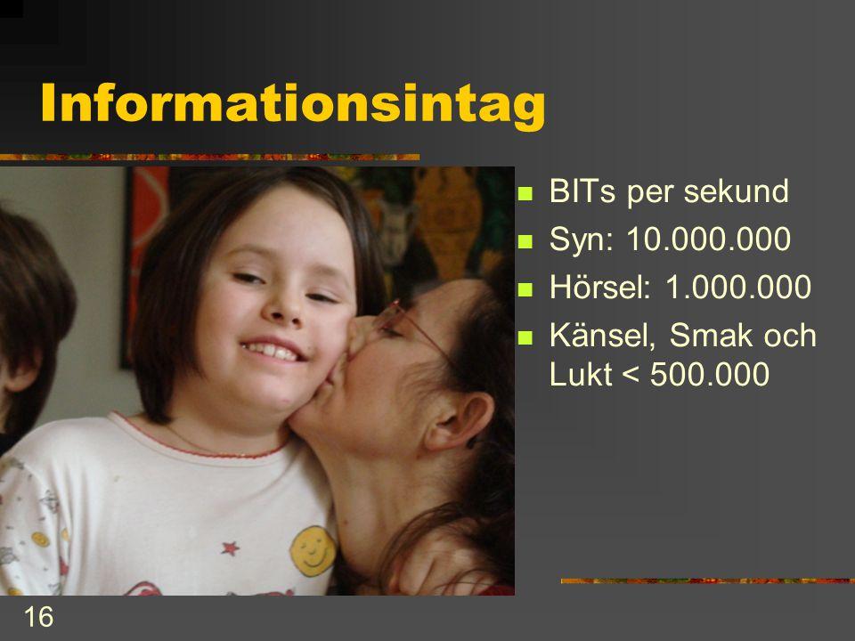 Informationsintag BITs per sekund Syn: 10.000.000 Hörsel: 1.000.000