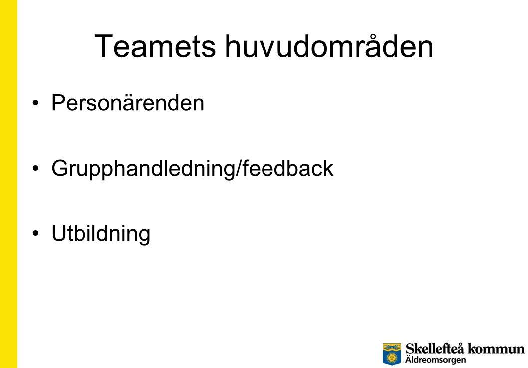 Teamets huvudområden Personärenden Grupphandledning/feedback
