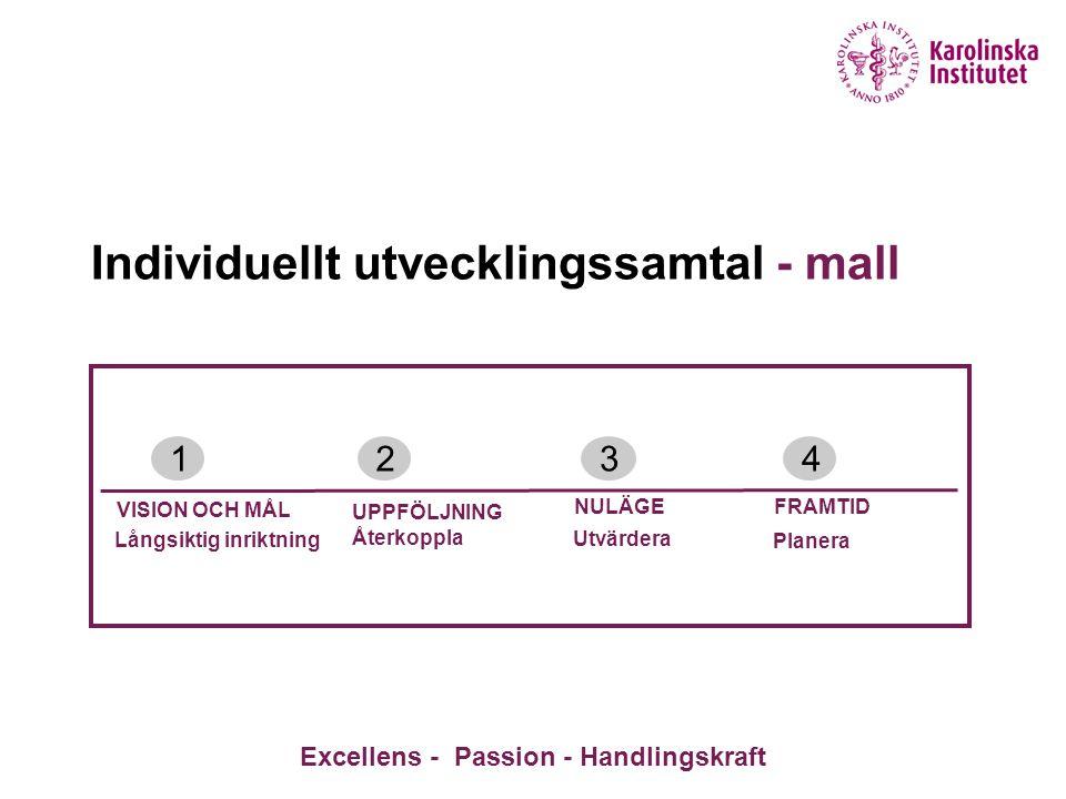 Individuellt utvecklingssamtal - mall