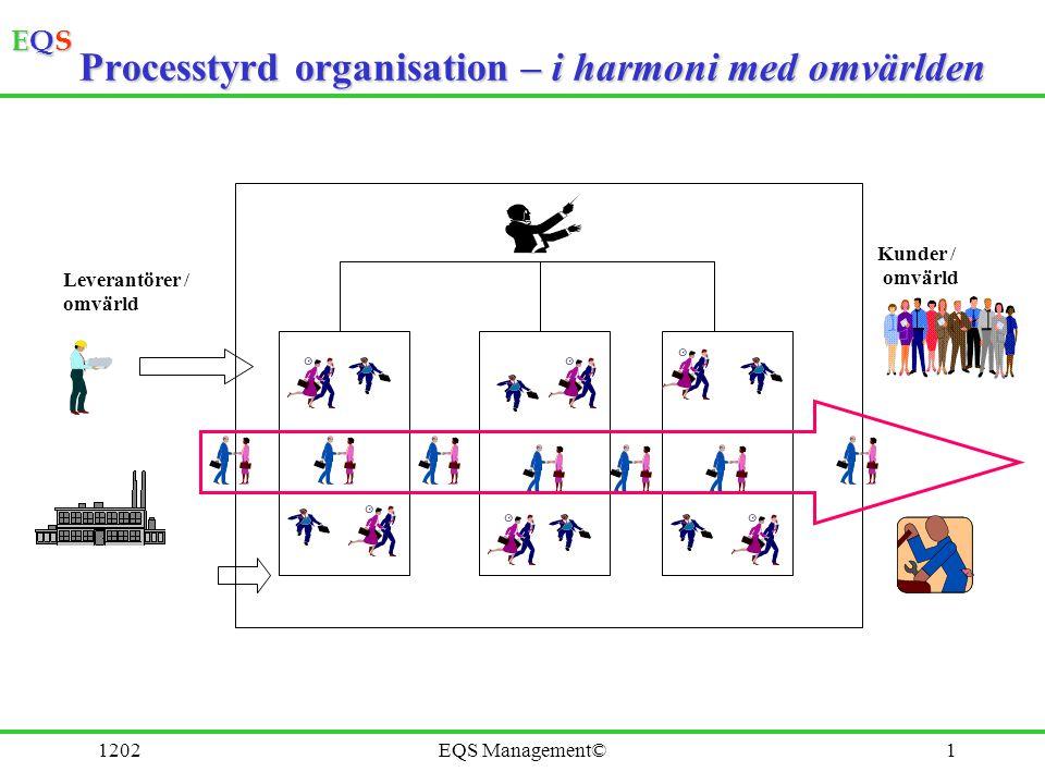 Processtyrd organisation – i harmoni med omvärlden