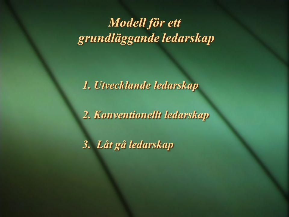 Modell för ett grundläggande ledarskap