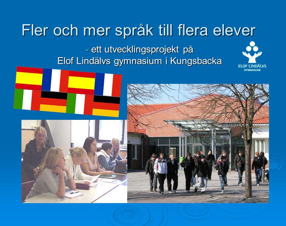 Fler och mer språk till flera elever