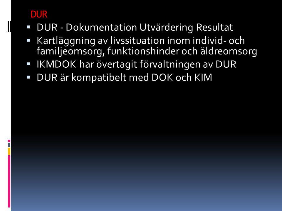 DUR DUR - Dokumentation Utvärdering Resultat. Kartläggning av livssituation inom individ- och familjeomsorg, funktionshinder och äldreomsorg.