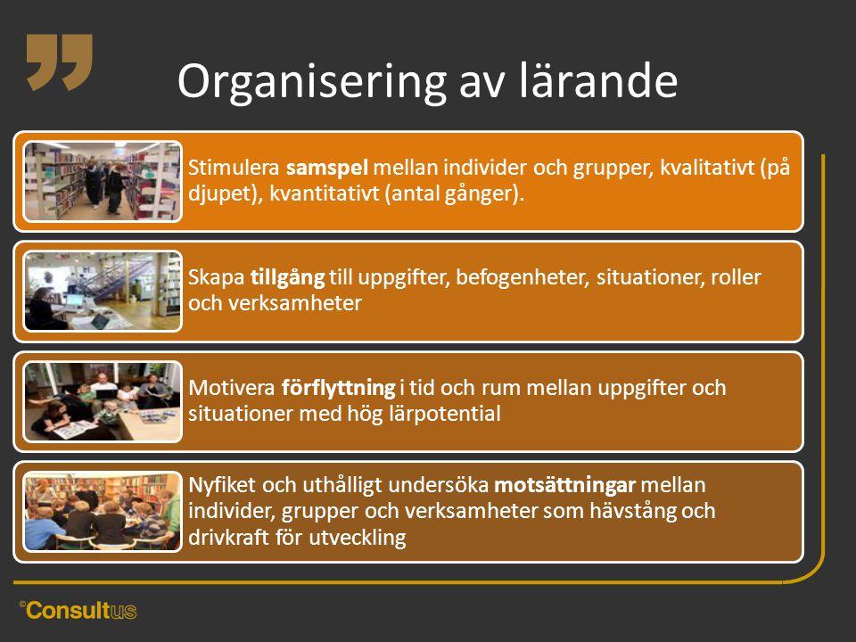 Organisering av lärande