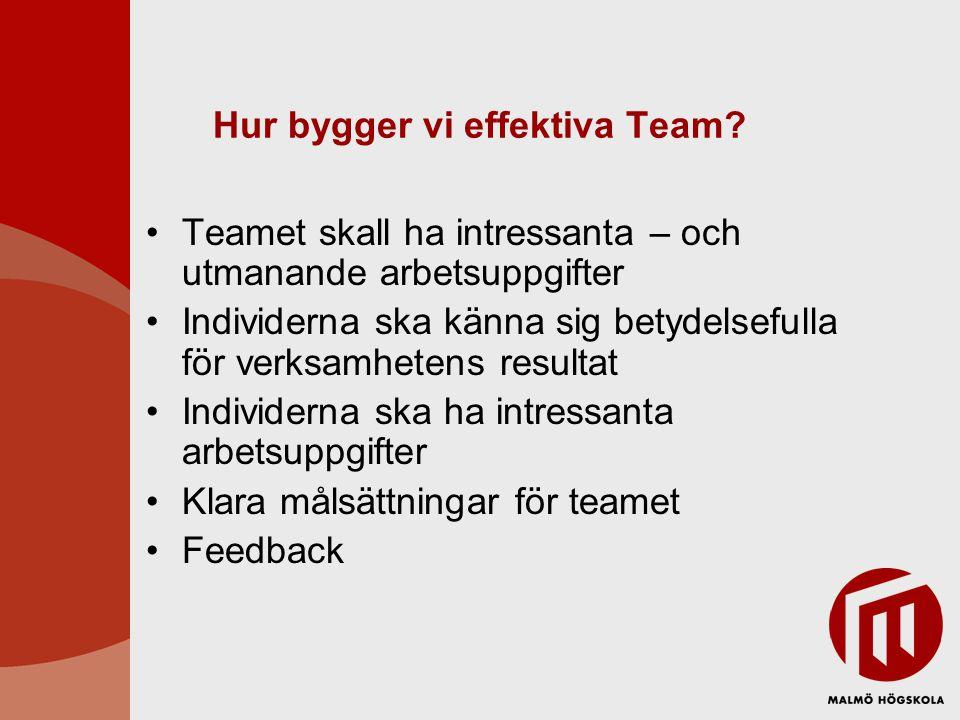 Hur bygger vi effektiva Team