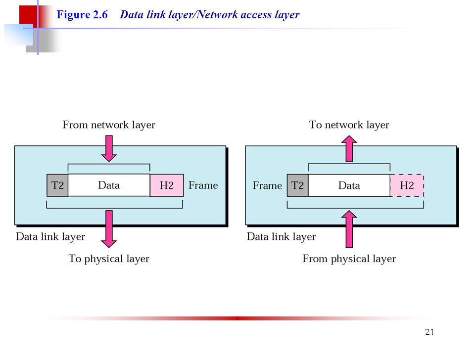 Figure 2.6 Data link layer/Network access layer