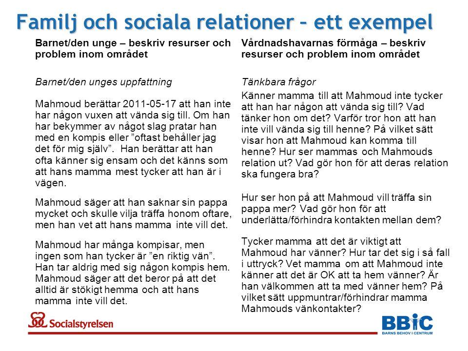 Familj och sociala relationer – ett exempel