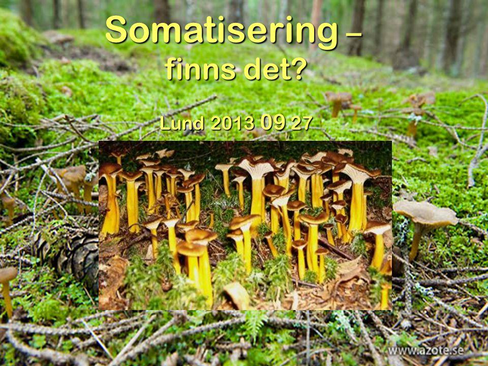 Somatisering – finns det Lund 2013 09 27