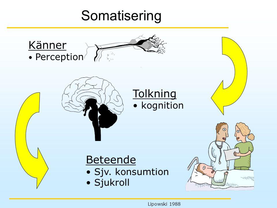 Somatisering Känner Tolkning Beteende kognition Sjv. konsumtion