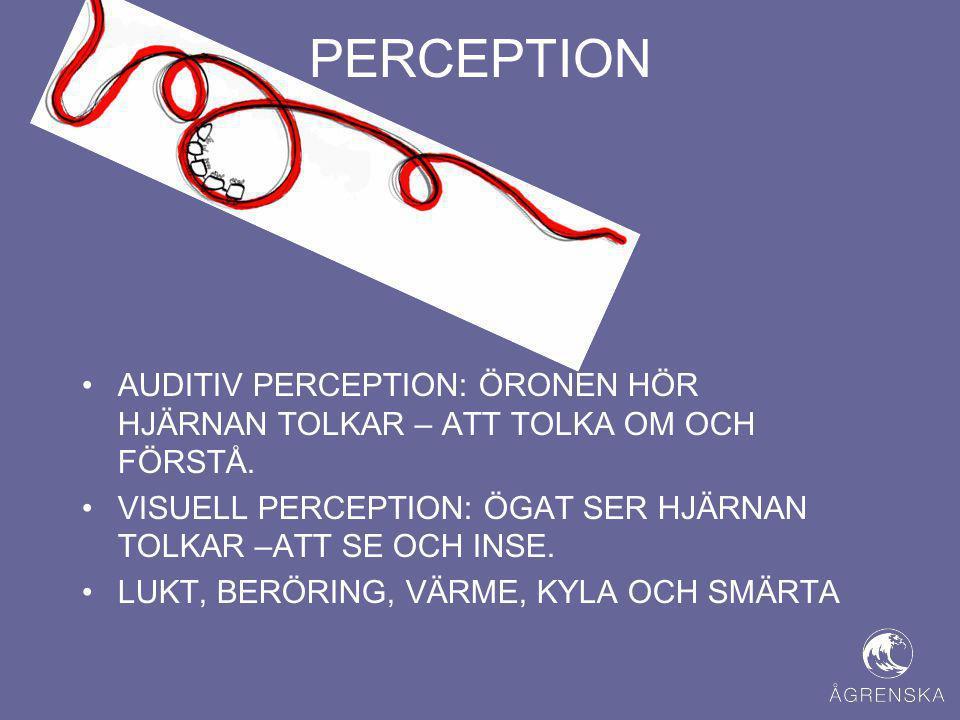PERCEPTION AUDITIV PERCEPTION: ÖRONEN HÖR HJÄRNAN TOLKAR – ATT TOLKA OM OCH FÖRSTÅ. VISUELL PERCEPTION: ÖGAT SER HJÄRNAN TOLKAR –ATT SE OCH INSE.