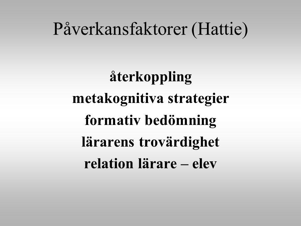 Påverkansfaktorer (Hattie)