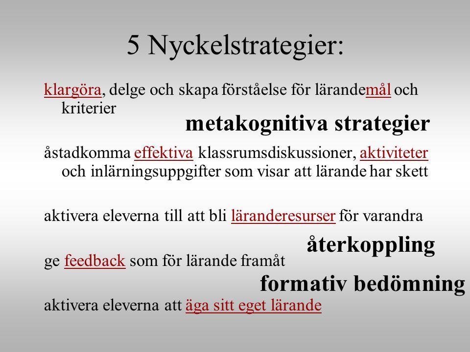 5 Nyckelstrategier: metakognitiva strategier återkoppling