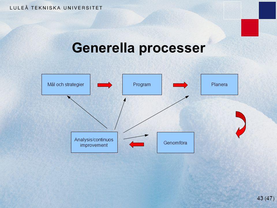 Generella processer Mål och strategier Program Planera