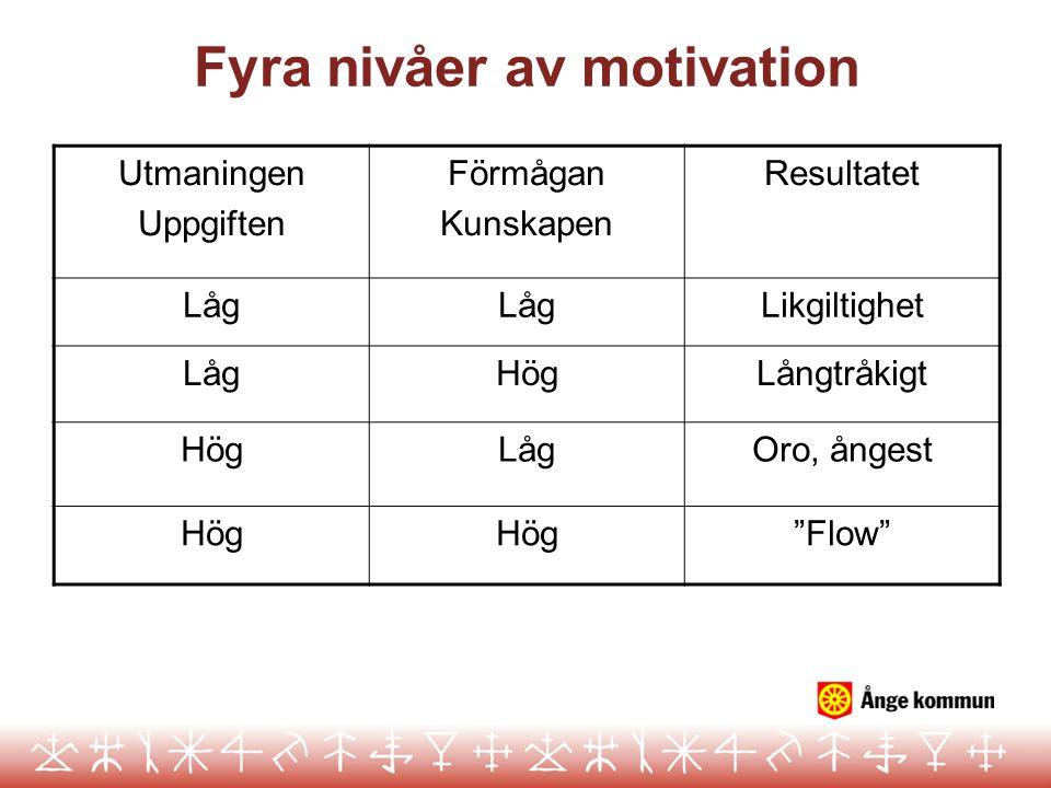 Fyra nivåer av motivation