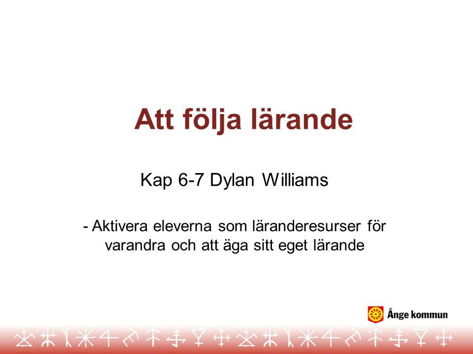 Att följa lärande Kap 6-7 Dylan Williams
