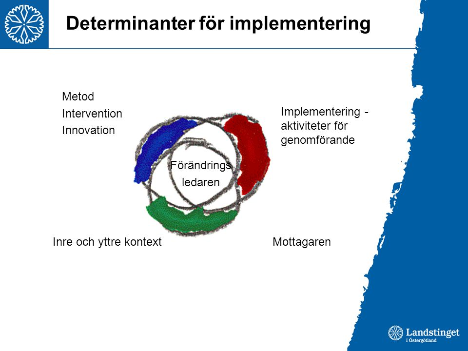 Determinanter för implementering