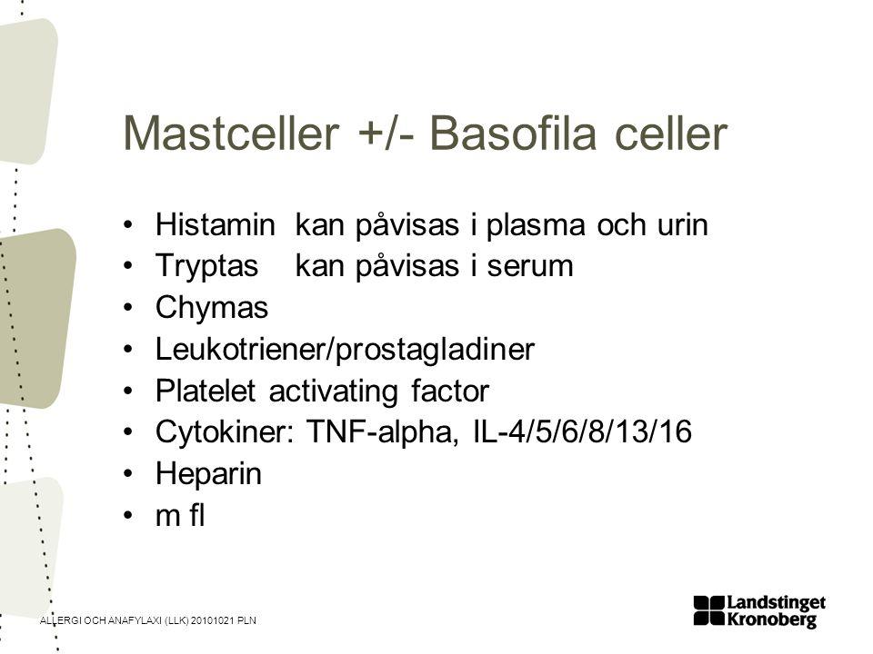 Mastceller +/- Basofila celler