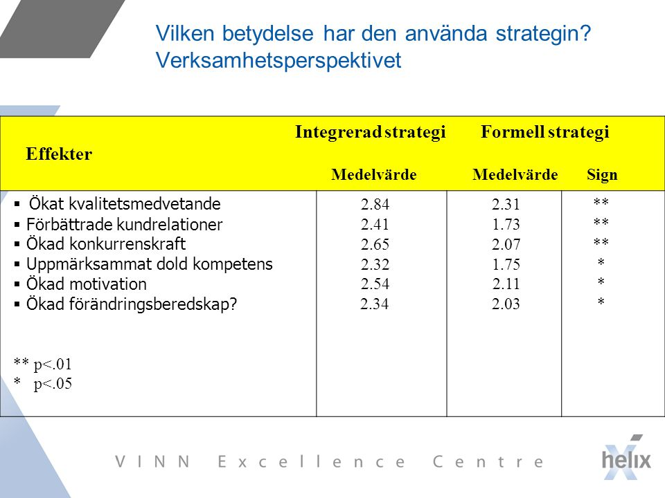 Vilken betydelse har den använda strategin Verksamhetsperspektivet