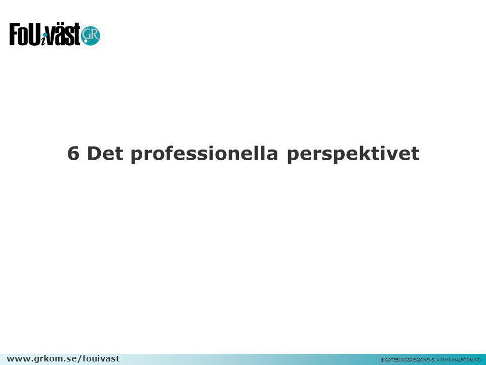 6 Det professionella perspektivet